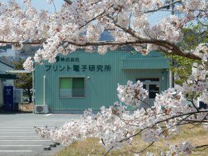 桜の間から見た広野工場