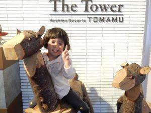ホテルのフロントの木彫りの鹿の上で