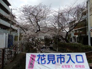 武蔵小杉商店街の花見市
