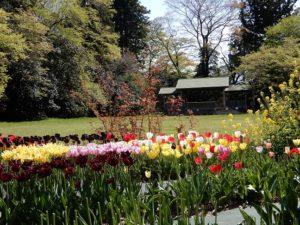 松島のある島の公園