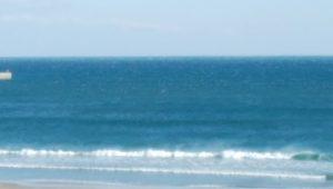 浪間に何か見える